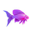 fish purple vector image