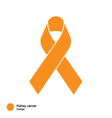 Kidney Cancer ribbon vector image vector image