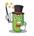 magician price tag mascot cartoon vector image vector image