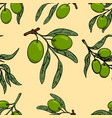 seamless pattern with olive branches design vector image