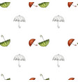 seamless pattern with red green and contoured vector image