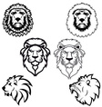 Set of lion heads vector image