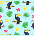 toucan pattern exotic tropical texture for print vector image
