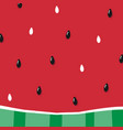 watermelon slice pulp with seeds background vector image