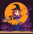 witch flying with black cat on a broomstick vector image
