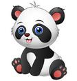 cute baby panda sitting vector image vector image