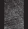 gauze texture 112 vector image