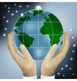 hands holding earth vector image vector image
