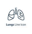 human internal organ healthy lungs respiratory vector image