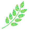 leaf branch composition of circles vector image