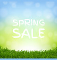 sale nature background with grass border vector image vector image