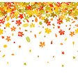 seamless border autumn falling leaf on white vector image