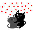 black gray cat hugging couple family red hearts vector image vector image