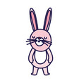 cute little rabbit cartoon character on white vector image vector image