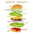 Hamburger ingredients set vector image vector image