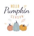hello pumpkin season retro autumn design vector image