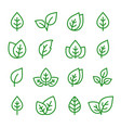 natural set green leaves line icons vector image