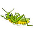 Funny Grasshopper cartoon vector image vector image