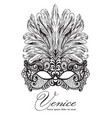 lace mask and feathers venice carnival vector image vector image
