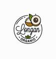 longan fruit logo round linear longan slice vector image