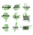 organic vegetables green lettering icons vector image