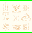 spica logos vector image