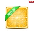 Square slice of orange Green Line vector image