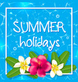 tropical summer frame with flowers vector image vector image