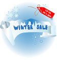 banner for a winter sale blue colour vector image