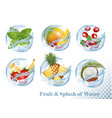 big collection fruit in a water splash icons vector image vector image