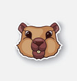 cartoon sticker groundhog head vector image