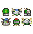 cricket sport items and player icons vector image vector image