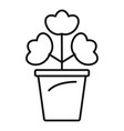 geranium pot icon outline style vector image