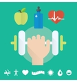 Gym concept flat icon set with health care food vector image vector image
