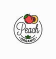 peach fruit logo linear slice background vector image vector image