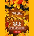 autumn sale discount poster