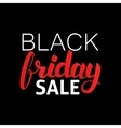 Black Friday Sale Lettering vector image vector image