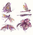 collection watercolor spring butterflies vector image