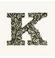 Elegant capital letter K in the style Baroque vector image