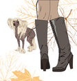 for a walk with the dog vector image vector image