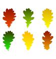oak leaves vector image vector image