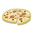 Pizza color vector image vector image