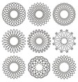 set rosettes ornaments and decorative lines vector image