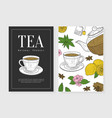 tea natural product card template cafe vector image vector image