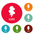 alder tree icons circle set vector image vector image
