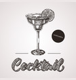 hand drawn sketch cocktail with text vector image