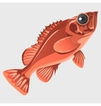 Image of the fish isolated in flat style vector image