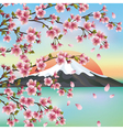 Japanese background with Japanese cherry tree vector image vector image