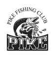 pike fishing emblem template with fish vector image vector image