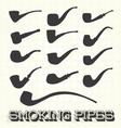 Retro Smoking Pipes vector image